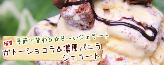 ガトーショコラ&濃厚バニラジェラート