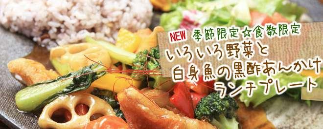 いろいろ野菜と白身魚の黒酢あんかけランチプレート